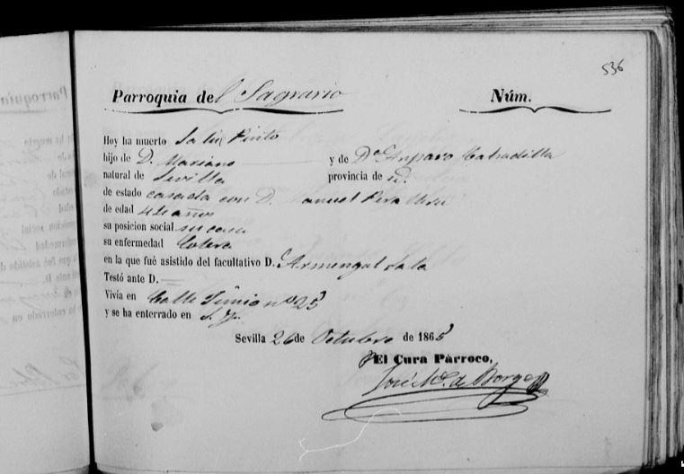 Acta de defunción de Salud Pinto Calzadilla.